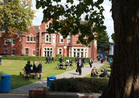 Hayes School